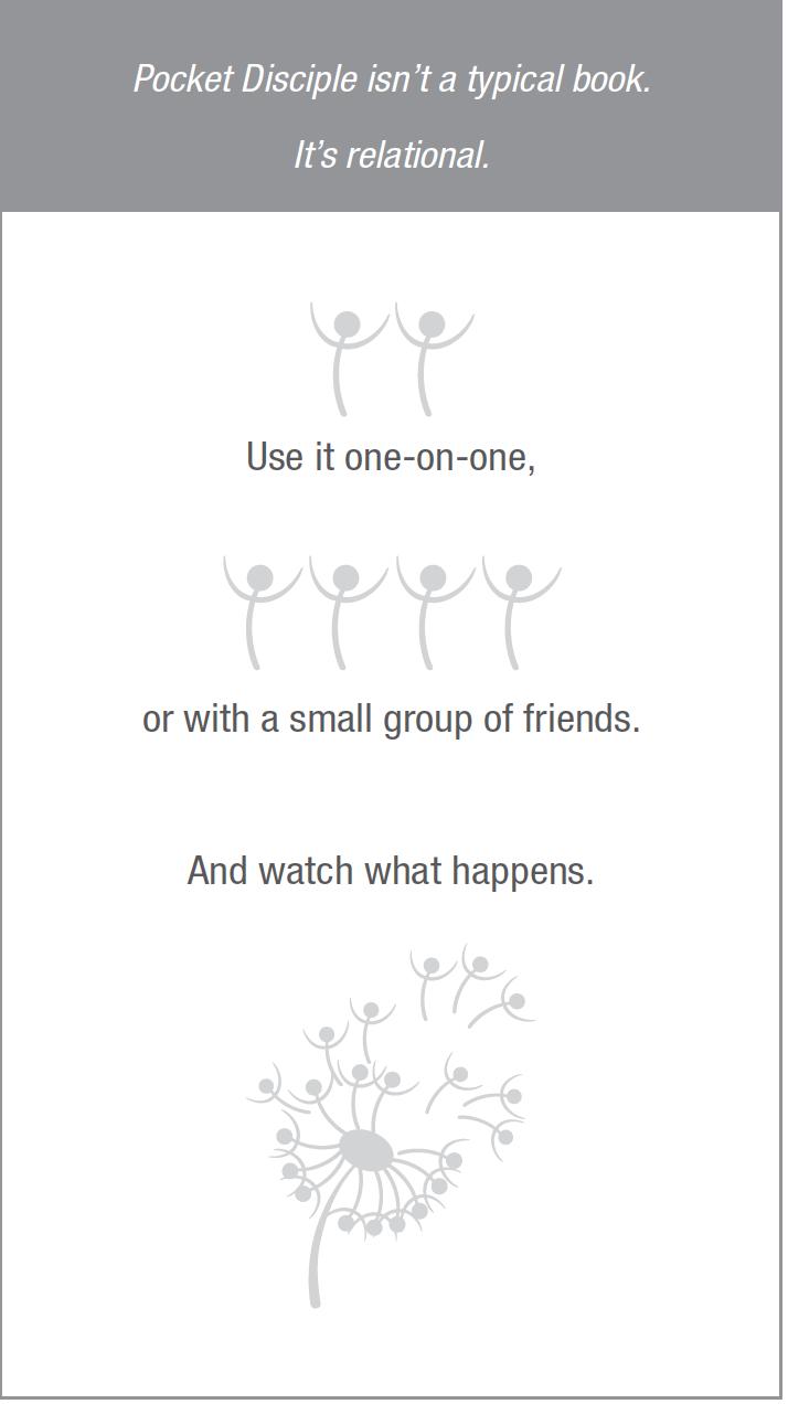 Pocket Disciple graphics description