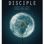 Disciple version II released this week